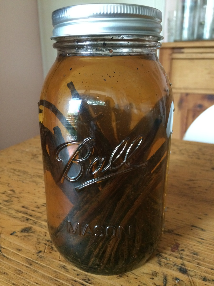Vanille-Extrakt, selbstgemacht